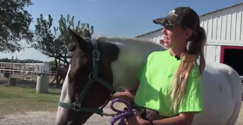 Senior devotes time to local horse rescue