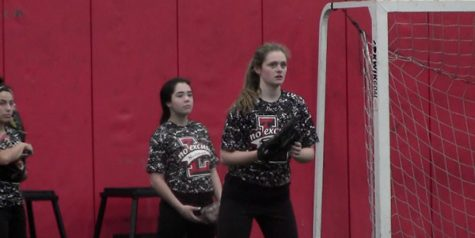 Softball seeks successful season