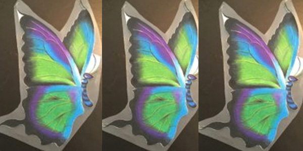 The 2017 t-shirt and postcard image for the 19th annual Butterfly Festival was created by former student Noah Lind.  (Lind's original work was  a single image. Pictured above is Lind's work photoshopped with the same image added twice to make Lind's artwork the same size as all other images on Wingspan.)