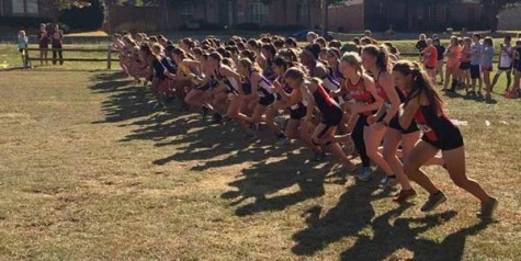 Running for State