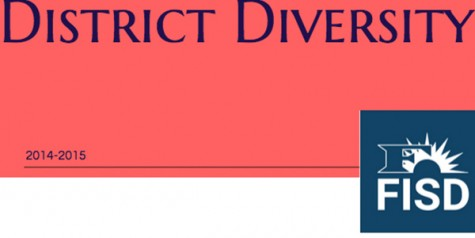 District diversity by the numbers