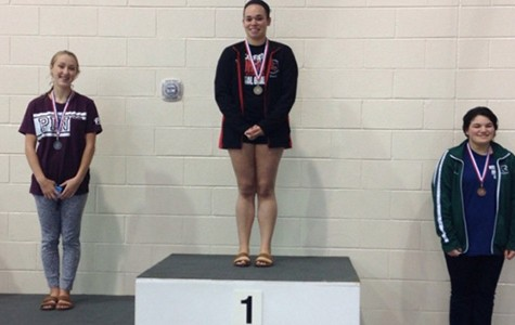 Burrell takes district diving championship