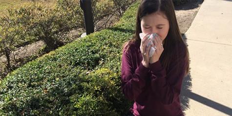 Opinion: An allergy annoyance