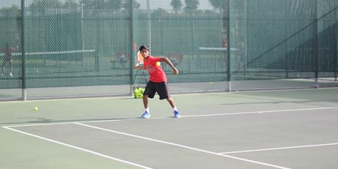 Tennis competes for area championship