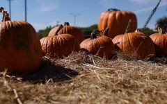 Opinion: the good and bad of Halloween