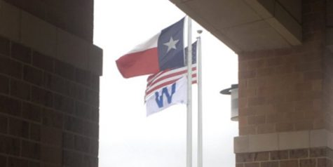 Cubs win flag flies on campus