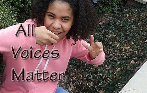 All Voices Matter: don't touch my hair