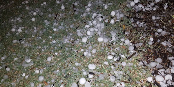 Hail ranging from small pellets to golf ball sized left damage throughout the area and littered yards in the region after a storm rolled through Sunday night.