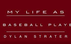 My Life As: a baseball player