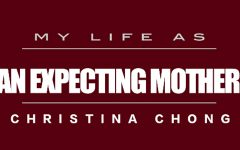 My Life As: an expecting mother