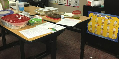 English classes focus on environmental issues