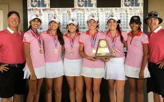 Title IX adds up for girls' athletics