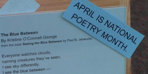 Frisco Public Library hosting poetry contest