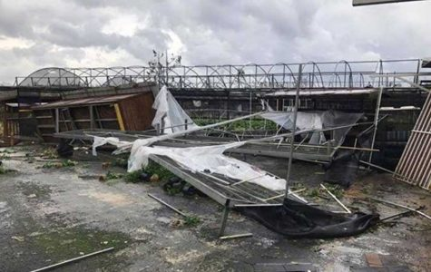 Caribbean hurricanes hit close to home for sophomore