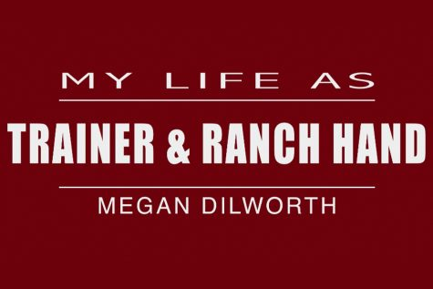 My Life As: Ranch hand & trainer