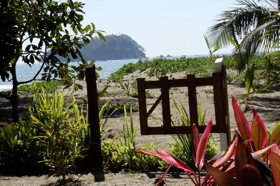 Reedy landed in Costa Rica and stayed with a local painter at one of the best spots of the beach.