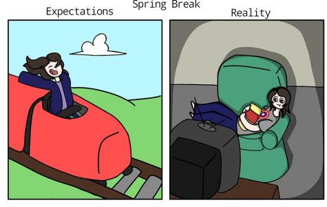 Expectations vs. reality of spring break