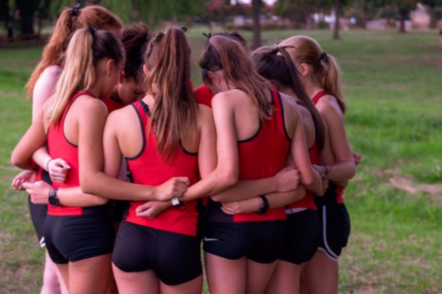 Cross country looks to repeat last meet