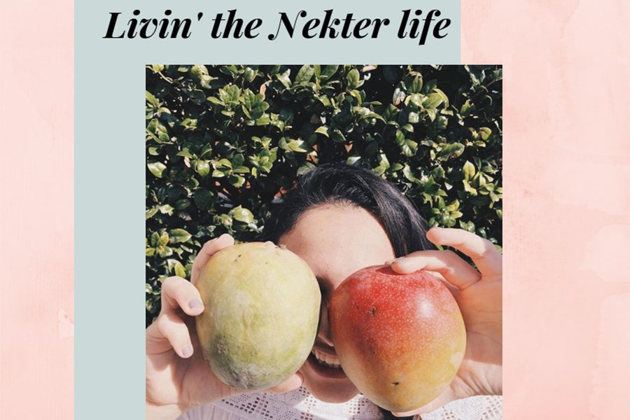 Nekter Juice Bar offers a dose of fruits and veggies through their wide variety of juices and smoothies.