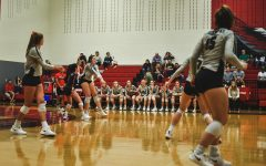 Volleyball hopes to serve up district championship