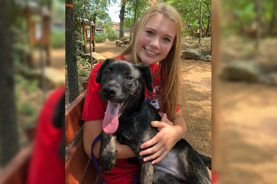 Volunteering holds a special place in Wingspan's Allie Lynn heart especially when it comes to helping animals in need. Lynn shares her opinion on volunteering as a whole as well as suggesting tips on how to get started.