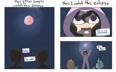 Watching the Super Blood Wolf Moon
