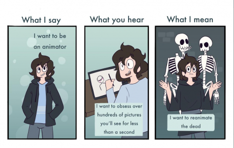 Misconceptions of animators