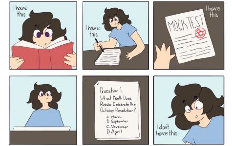 AP test struggles