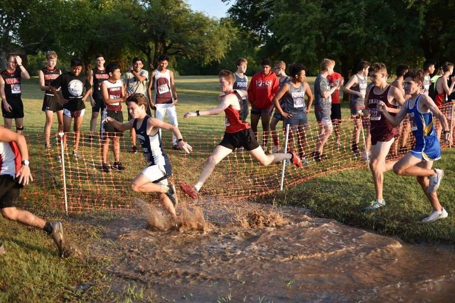 Cross country individuals place at state