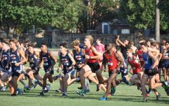 Cross country teams open season with top 10 finishes in Plano