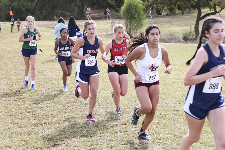 Cross country races into District meet