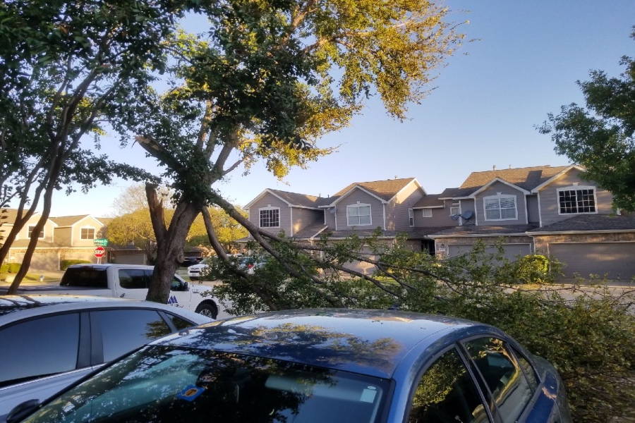 The tornado sirens and storms that crashed through North Texas Sunday night hit a little too close to home for some students on campus. While most just suffered a warning, others will have to repair fences and cars from due to the strong winds.
