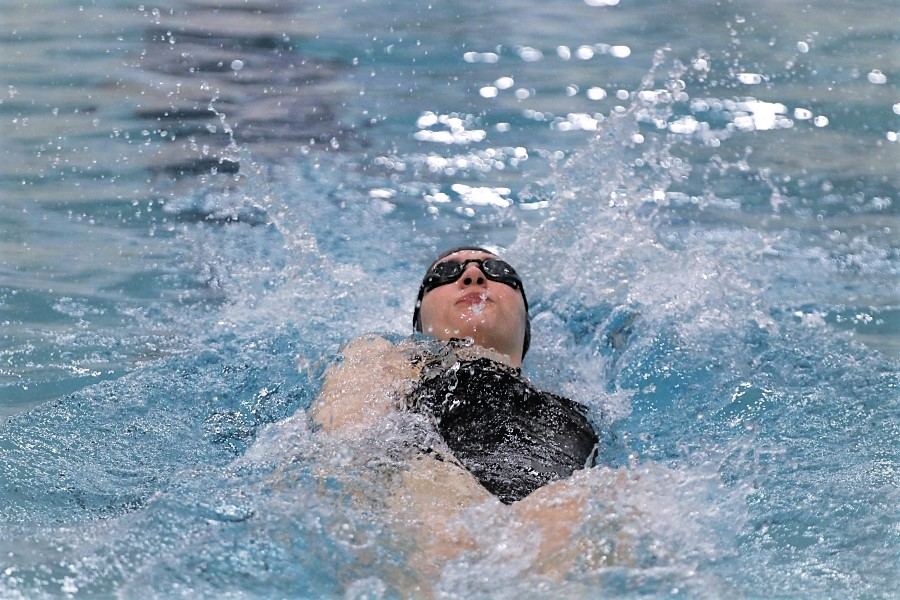 Swimmers take final strokes toward state championship