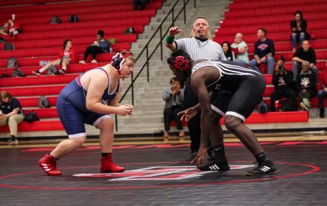 Success at regionals sends eleven wrestlers to state
