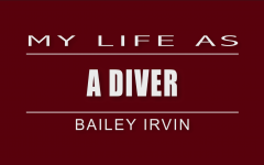 My Life As A Diver