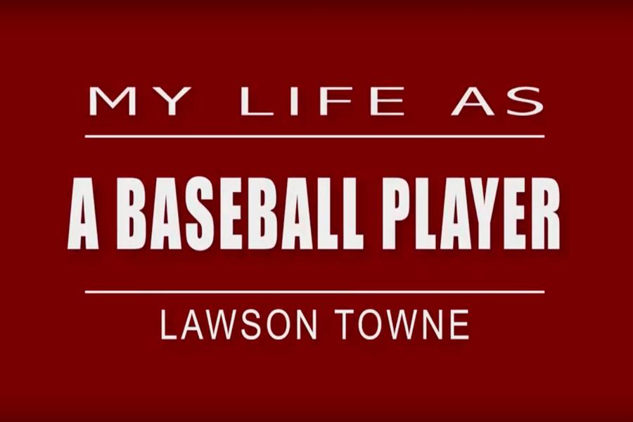 My Life As: baseball player