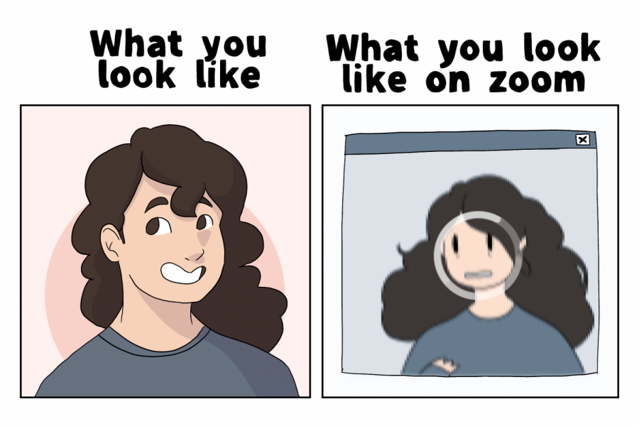 Looks aren't the same on Zoom