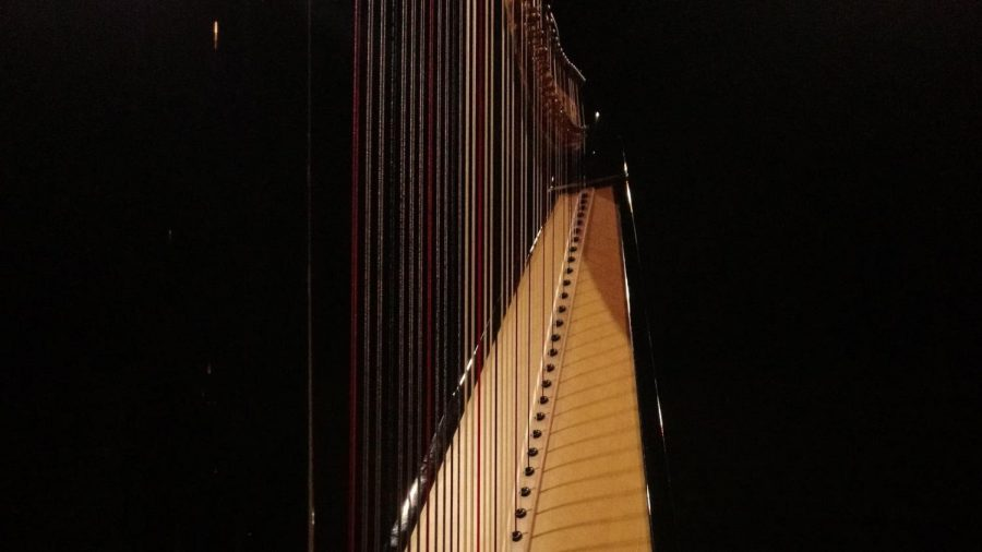 """Playing since elementary school, junior Aleeza Hussain enjoys the different sounds and acoustics of the harp. """"My favorite part about playing the harp is probably figuring out the different sounds you can make because harps can evoke a variety of emotions. All of the harmonies always come together so beautifully which is really nice."""""""