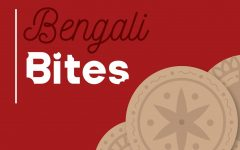 Wingspan's Ananda Ghoshal delves deeper into the world of Bengali food and shares her thoughts.
