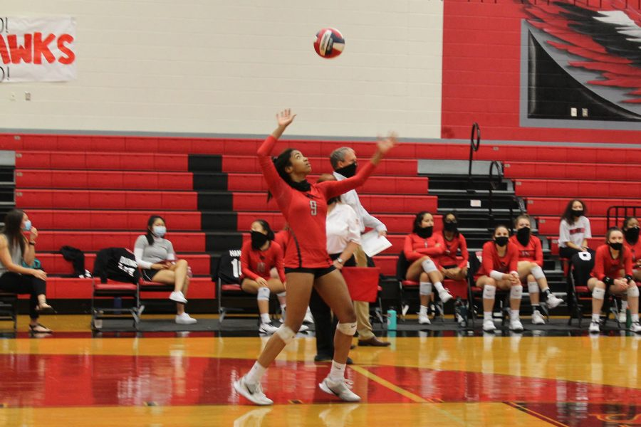 Volleyball's winning streak on the line against Lone Star