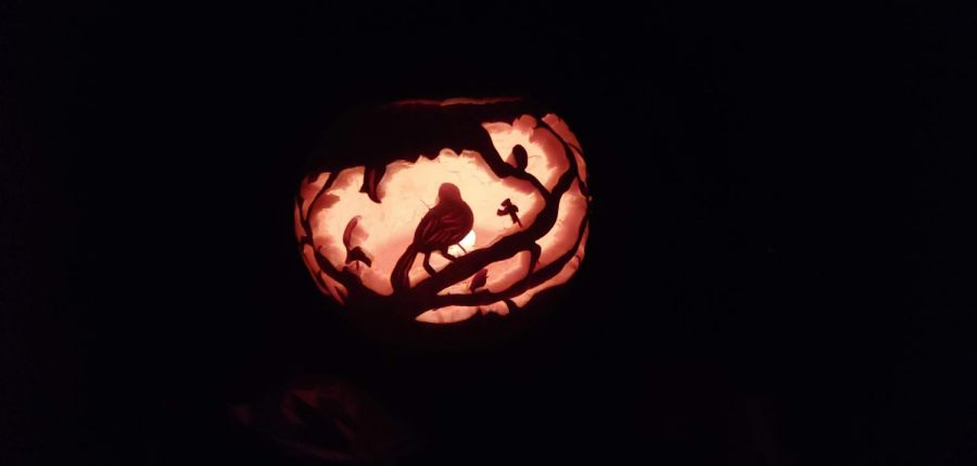From the right angle, the light perfectly illuminates Senior Michael Martin's pumpkin carving of a bird sitting peacefully atop a branch with little details of leaves.