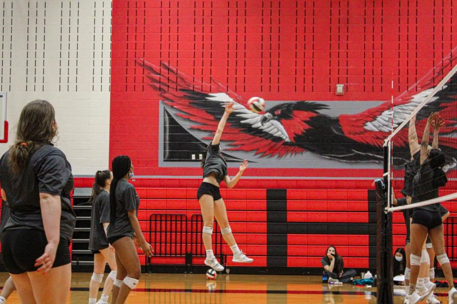 A series of ups and downs has not stopped the Redhawks this season. Following numerous wins and losses, the Redhawks continue on in District 9-5A with a two game winning streak.
