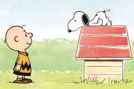 """Since the creation of """"A Charlie Brown Christmas"""" in 1965, the Peanuts gang have appeared in various TV cartoon specials, with the most beloved being the specials revolving around holidays, such as Halloween, Thanksgiving, and most of all, Christmas."""