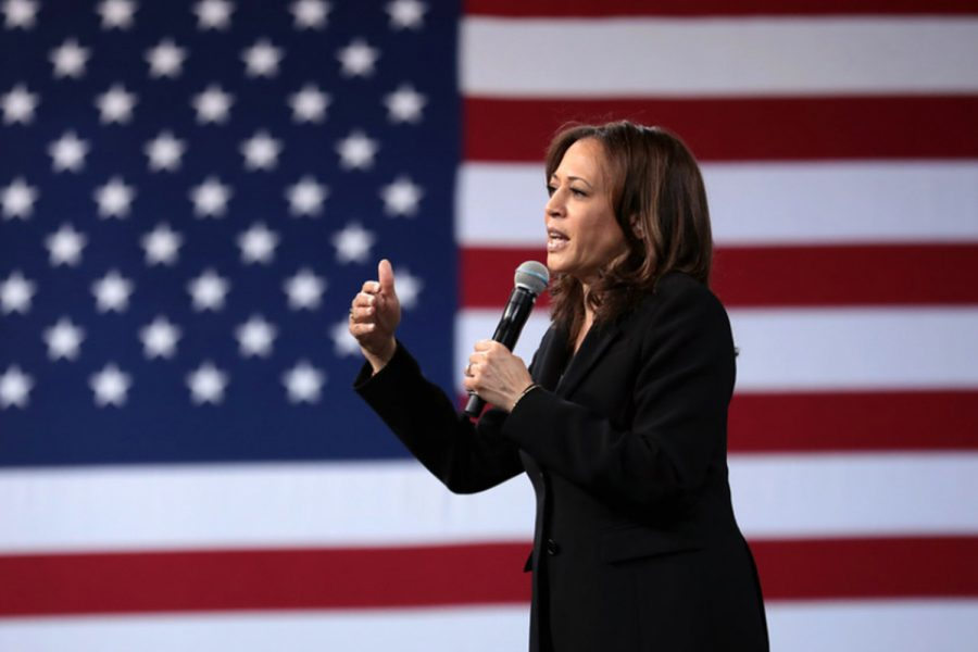Kamala Harris has broken several glass ceilings in her historic career, becoming the first person of South Asian descent and second Black woman to serve in the Senate, and now the highest-ranked female official in American history.