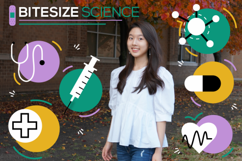 Junior Stephanie Chung shares recent news related to science and healthcare in her weekly podcast, Bitesize Science. She will also be sharing valuable and useful information for the community to stay healthy amidst the COVID-19 situation.