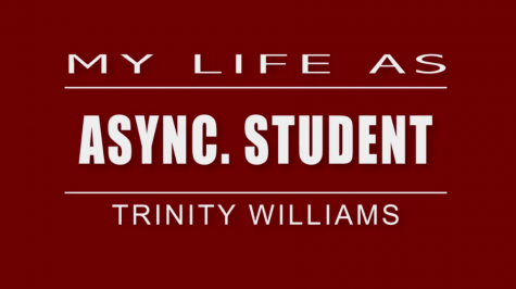 My Life As: asynchronous student