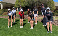 Shooting a 652 over two days at Sherrill Park Golf Course in Richardson was good enough for the girls' golf team to take second place in the District 9-5A tournament Monday and Tuesday. The Redhawks join District 9-5A champion Lebanon Trail in the 5A Region II tournament Monnday.