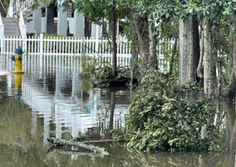 Hurricane Ida hit Louisiana recently leaving many Redhawk students and staff to be worried. As a result, an organization on campus stepped up to help with the damage done.